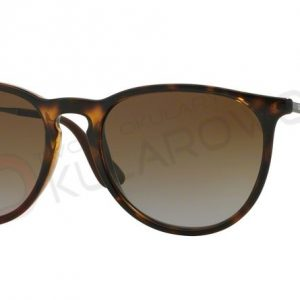 Ray-Ban model ERIKA RB 4171 710/T5