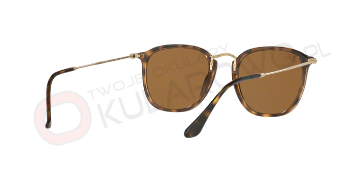 6d0fd09299 PL - RAY-BAN - Ray-Ban RB2448N 6256 9U 51-21 Brown Gradient Flat Lenses